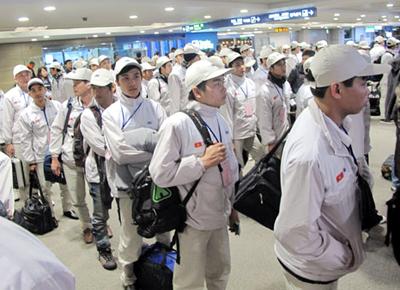 Đi XKLĐ Nhật Bản 1 năm thì có thể đi ngành nào?