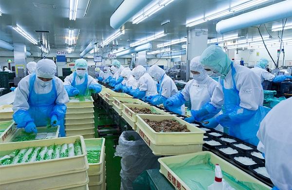 Các ngành nghề phái cử thực tập sinh Nhật Bản theo quy định của JITCO