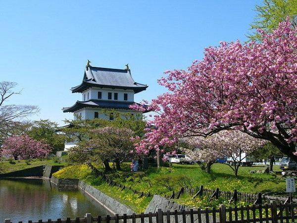 Mách bạn 7 địa điểm đẹp nhất để ngắm hoa anh đào tại Nhật Bản 3