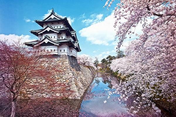 Mách bạn 7 địa điểm đẹp nhất để ngắm hoa anh đào tại Nhật Bản 8