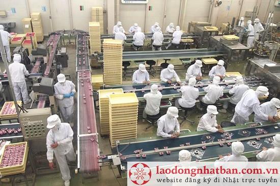 Tuyển gấp 30 nam làm cơm nắm tại Nhật Bản với thu nhập cực khủng