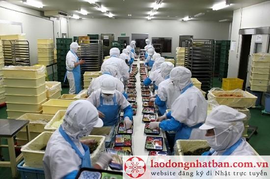 Tuyển gấp 75 Nam/Nữ đóng cơm hộp đi Xuất khẩu lao động Nhật Bản tháng 07/2018