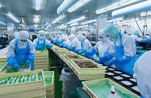 Đơn hàng 10 nam làm chả cả xuất khẩu lao động tại Tokyo, Nhật Bản