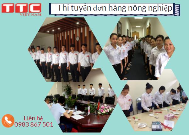 Thi tuyển đi xuất khẩu lao động Nhật Bản các đơn hàng nông nghiệp tại TTC Việt Nam