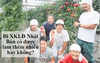 Đi xuất khẩu lao động Nhật Bản có được làm thêm nhiều không?