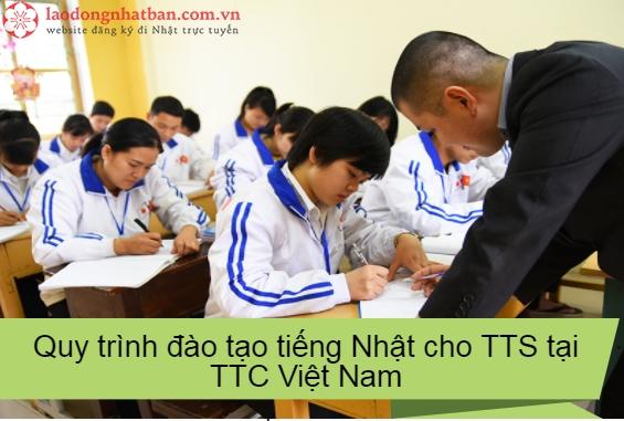 Quy trình đào tạo tiếng Nhật cho thực tập sinh tại TTC Việt Nam