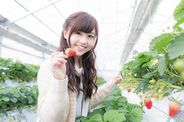 Những ngành nghề lương cao phù hợp với nữ giới khi đi xuất khẩu lao động Nhật Bản