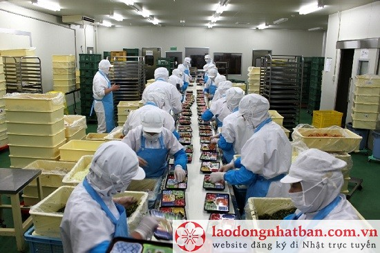 Tuyển gấp 35 Nam/Nữ đóng cơm hộp đi Xuất khẩu lao động Nhật Bản tháng 11/2018