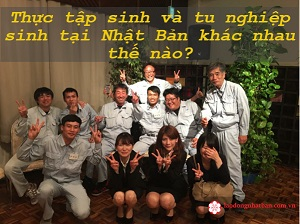 Thực tập sinh Nhật Bản là gì? Tu nghiệp sinh Nhật Bản là gì? Khác nhau như thế nào?