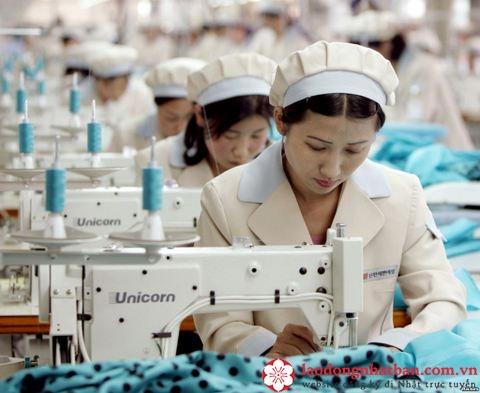 Công việc may mặc đi xuất khẩu lao động tại Nhật Bản như thế nào?