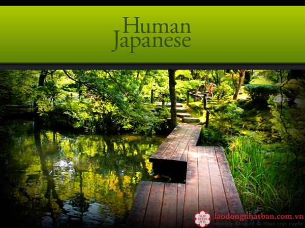 phần mềm human japanese