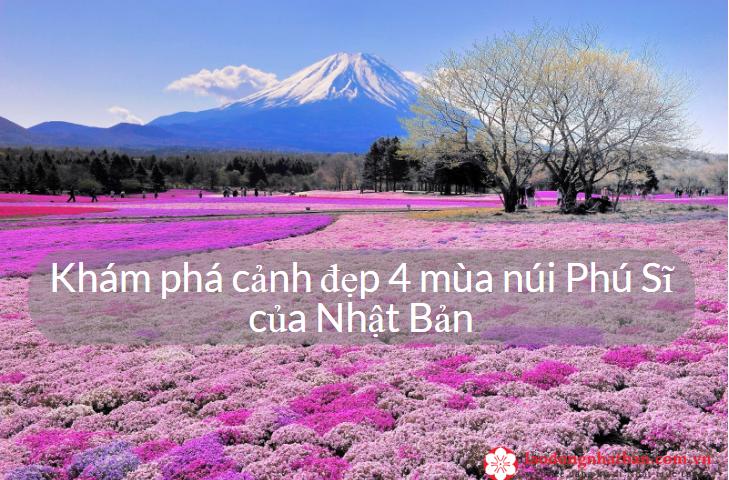 Khám phá cảnh đẹp 4 mùa núi Phú Sĩ của Nhật Bản