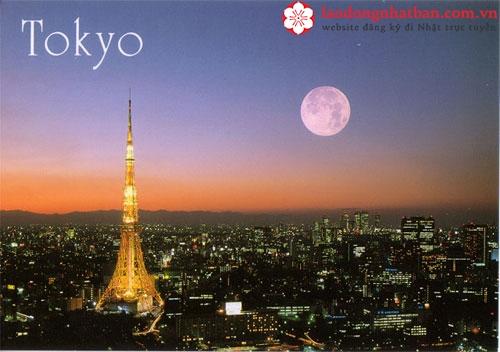 Tháp Tokyo cao bao nhiêu? Tháp Tokyo ở Ga nào? Đôi nét về tháp Tokyo