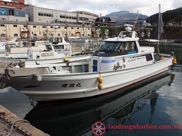 Tuyển 27 Nam đánh bắt Ngư Nghiệp không yêu cầu tiếng tại Nhật Bản