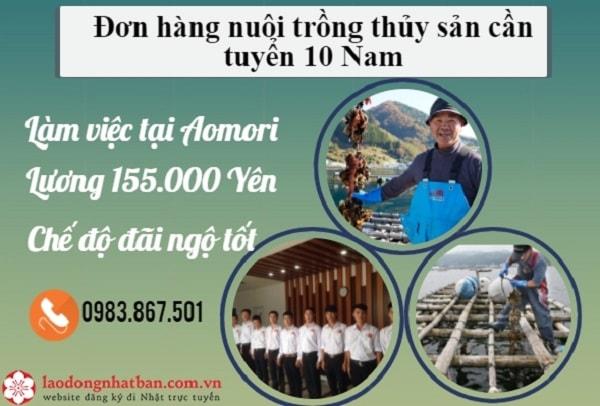 Tiêu điểm đơn hàng nuôi trồng sò điệp tháng 4 dành cho 10 nam