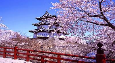 Lịch Hoa anh đào Nhật Bản nở năm 2020- Rủ bạn bè đi ngắm nhé