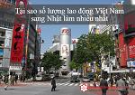Tại sao số lượng lao động Việt Nam sang Nhật làm nhiều nhất