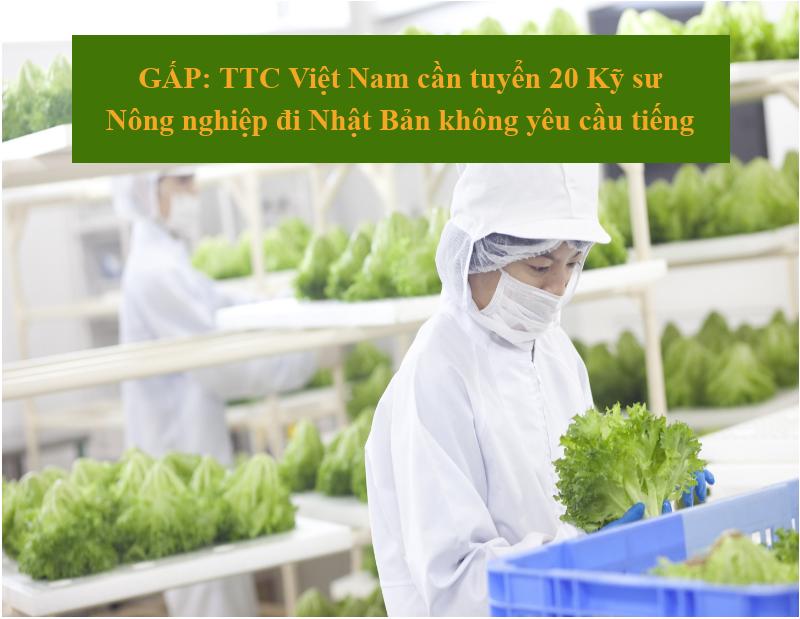 GẤP: TTC Việt Nam cần tuyển 20 Kỹ sư Nông nghiệp đi Nhật Bản không yêu cầu tiếng
