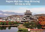 Có nên đi XKLĐ Nhật Bản tại Nagano của Nhật Bản không? Những điều cần biết khi đến Nagano