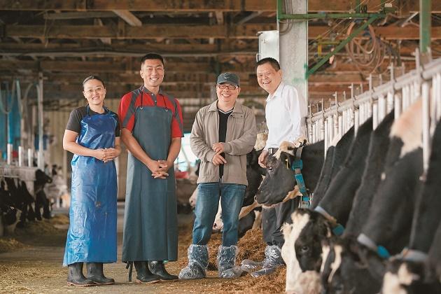 Tuyển 3 cặp vợ chồng đi xuất khẩu lao động Nhật Bản đơn hàng chăn nuôi bò sữa