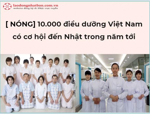 [ NÓNG] Nhật Bản tuyên bố sẽ nhận thêm 10.000 điều dưỡng Việt Nam do quá thiếu nguồn nhân lực