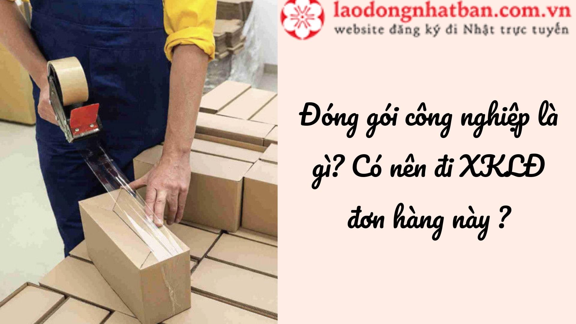 Đơn hàng đóng gói công nghiệp là gì? Có nên làm đóng gói công nghiệp tại Nhật không?