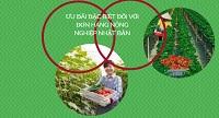 ƯU ĐÃI đặc biệt đối với đơn hàng nông nghiệp Nhật Bản: LƯƠNG CAO, CHI PHÍ THẤP