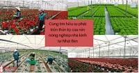 Cùng tìm hiểu sự phát triển thần kỳ của nền nông nghiệp nhà kính tại Nhật Bản