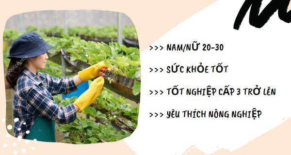 Cần gấp 24 nam/nữ đơn hàng thu hoạch dâu tây tại Chiba - thu nhập 30 triệu/ tháng ldnb