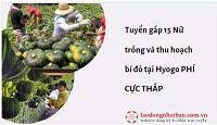 Tuyển gấp 15 Nữ trồng và thu hoạch bí đỏ tại Hyogo PHÍ CỰC THẤP