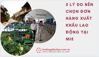 5 LÝ DO nên chọn đơn hàng xuất khẩu lao động tại Mie