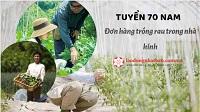 Tuyển 70 Nam trồng rau nhà kính tại Ibaraki Nhật Bản KHÔNG TIẾNG