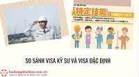 So sánh visa đặc định và visa kỹ sư. Nên tham gia đơn hàng theo diện visa nào?