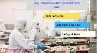 Tổng hợp 9 đơn hàng đóng gói thực phẩm Nhật Bản lương 32 triệu/tháng