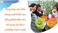 Tổng hợp các đơn hàng xuất khẩu lao động Nhật Bản cho nữ quay lại lần 2 LƯƠNG CỰC CAO