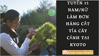 Tuyển 15 Nam/Nữ làm cắt tỉa cây cảnh tại Kyoto LƯƠNG CỰC KHỦNG
