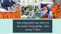 Đơn hàng phân loại, kiểm tra sản phẩm nông nghiệp - Mức lương 17 Man