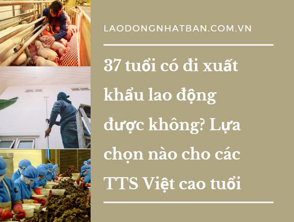37 tuổi có đi xuất khẩu lao động được không? Lựa chọn nào cho các TTS Việt cao tuổi