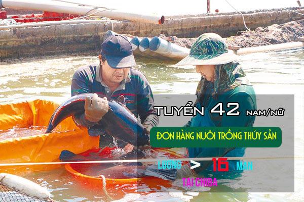 Đơn VIP - Tuyển 42 Nam/ nữ đơn hàng nuôi trồng thủy sản ở Nhật Bản - PHÍ CỰC THẤP