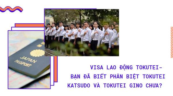 Visa lao động Tokutei- bạn đã biết phân biệt Tokutei Katsudo và Tokutei Gino chưa?